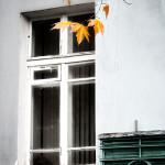 Осень в Евпатории. Фото Е. Покрепы.