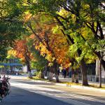 Осенняя Евпатория. Фото Е. Покрепы.